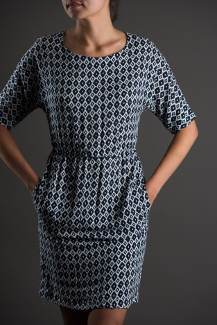 The Sheath Dress by The Avid Seamstress